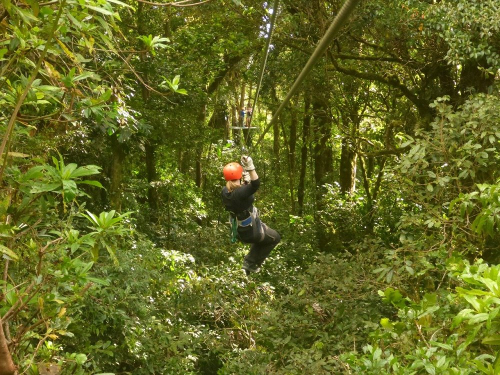 The lush green canopy of the Monteverde cloud forest frames this zip line perfectly.