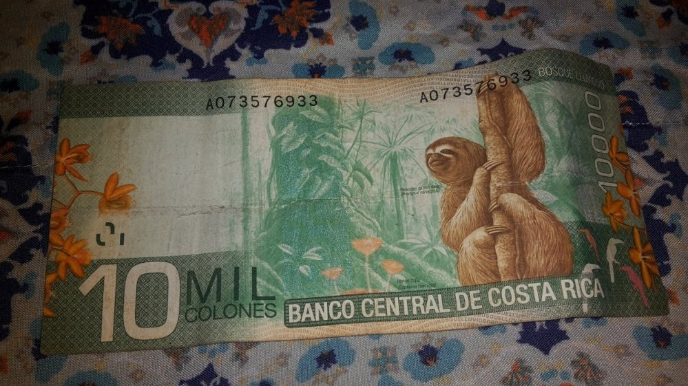 The Costa Rican 10000 colones bill features a sloth.